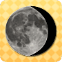 Many Phases of the Moon - worksheet on the science of the universe