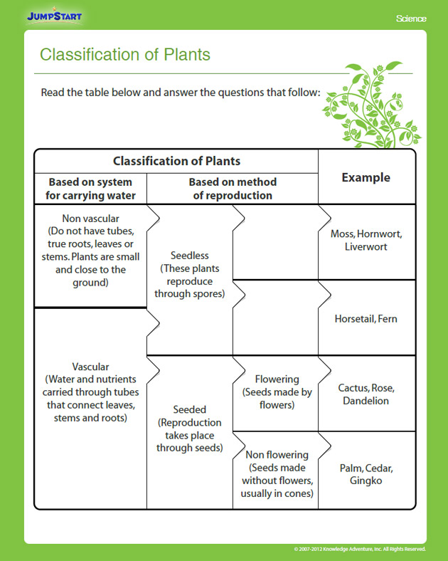 classification of plants view � printable 4th grade