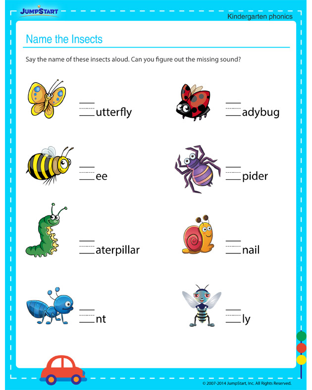 Name the Insects u2013 Free English Worksheet for Kindergarten ...