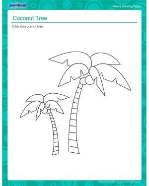 Coconut Tree Nature Coloring Pages And Printables