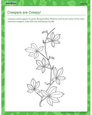 Creepers are Creepy - Plants coloring page