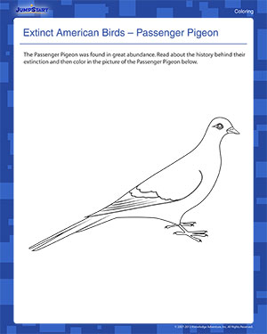 Extinct American Birds 2 - Elementary Coloring Worksheet