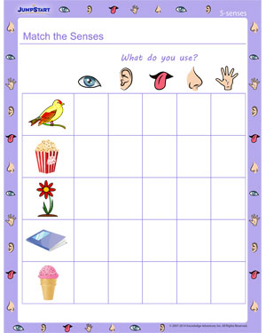 Match the Senses | Free Five Senses Worksheet | JumpStart