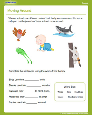 Moving Around - Free First Grade Science Worksheet - JumpStart