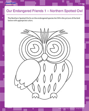 Our Endangered Friends 1 – Northern Spotted Owl - Free Earth Day Coloring Worksheet for Kids