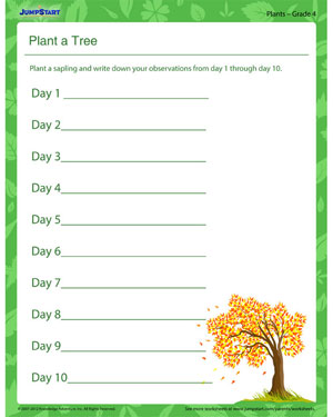Plant a Tree – Free Printable Plant Worksheet for Grade 4