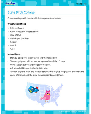 State Birds Collage - Social Studies activity for kids