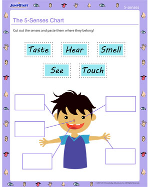 math worksheet : the 5 senses chart  free five senses worksheet  jumpstart : Five Senses Kindergarten Worksheets