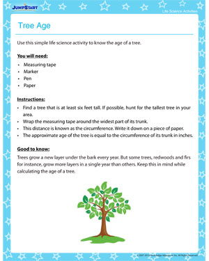 Tree Age – Free Life Science Activities and Printables