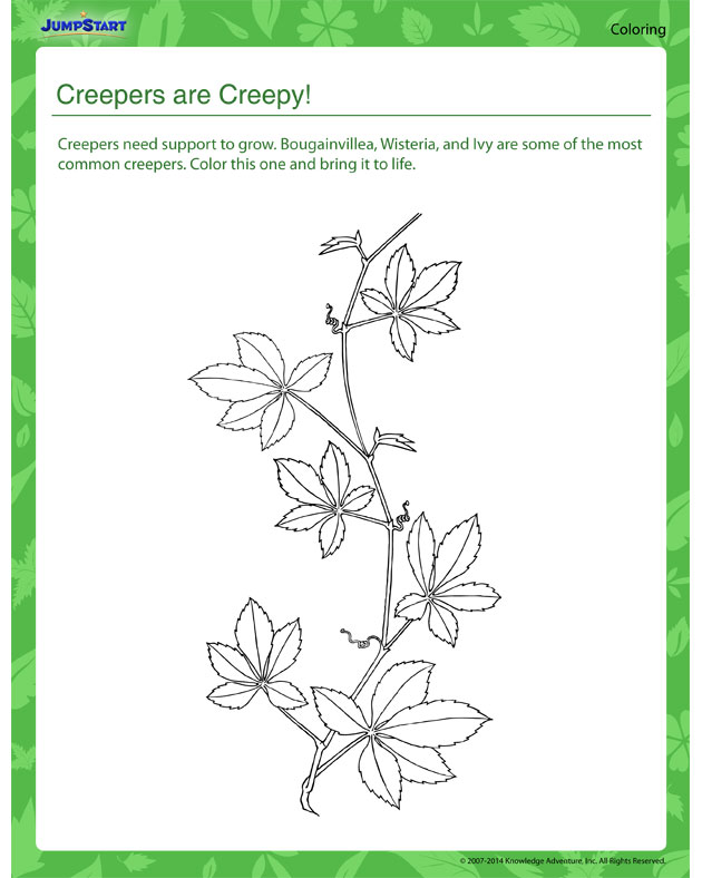 Creepers are Creepy - Plant coloring worksheets