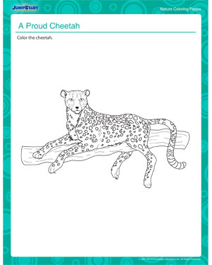 A Proud Cheetah - Fun cheetah coloring page for kids