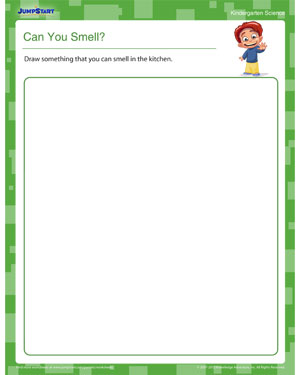 Can You Smell? - Science worksheet for kids