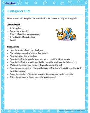 Caterpillar Diet – Free Life Science Activity and Printable for Kids