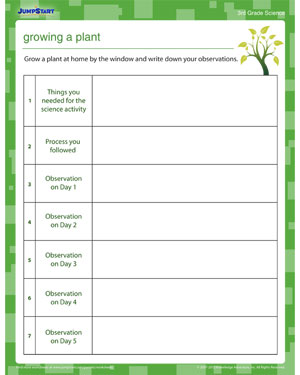 Growing a Plant - Science worksheet for kids