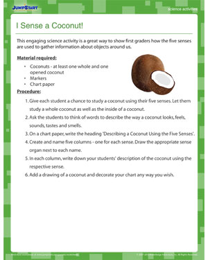 I Sense a Coconut - Fun Science Activity for Kids