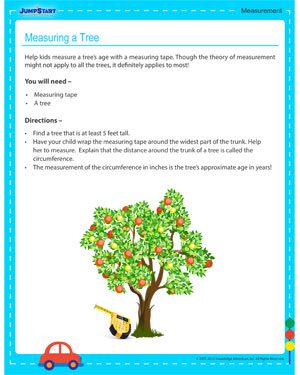 Measuring a Tree! - free 3rd grade activity for kids