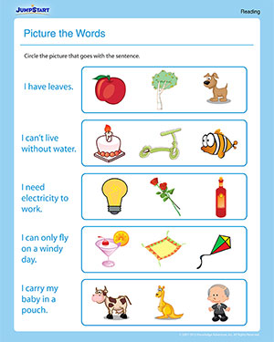 Picture the Words - 1st Grade Reading Worksheet