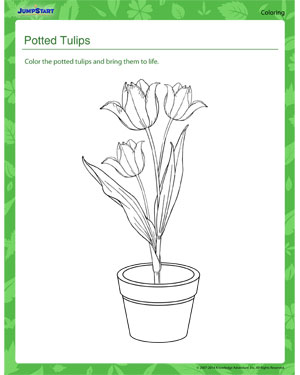 Potted Tulips - Plants coloring page