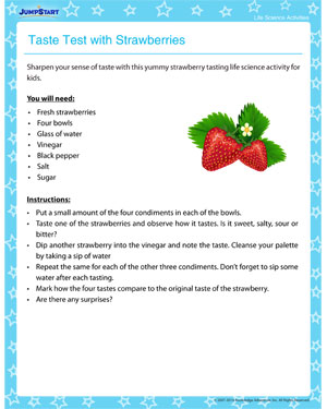 Taste Test with Strawberries – Free Life Science Activity and Printable Online