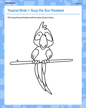 Tropical Birds 1 - Suzy the Sun Parakeet - Free Coloring Worksheet for Kids