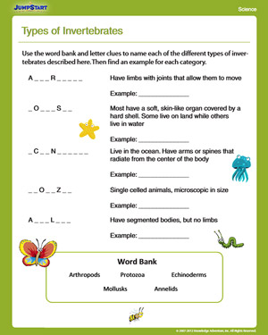 Types of Invertebrates – Free Science Worksheet for 4th Grade ...