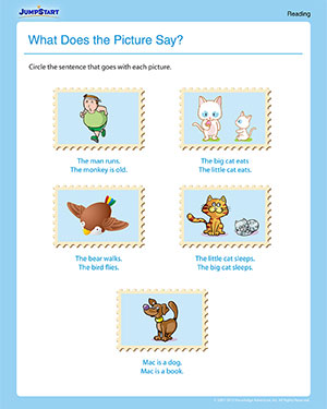 What Does the Picture Say - Elementary Reading Worksheet